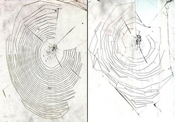 Charlotte's Getting Shabby: Aging Spiders Weave Messy Webs