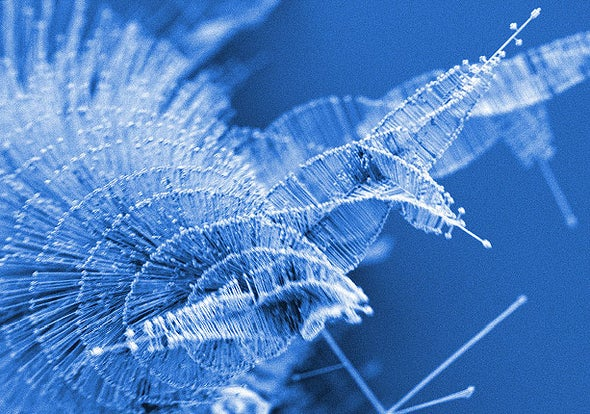 New Twist on Nanowires