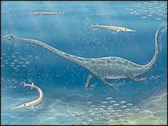 Ancient Long-Necked Reptile Was Stealthy Suction Feeder