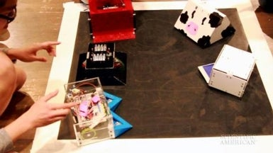 Battling Bots Get Pushy at the 10th Annual Sumo Robot Match