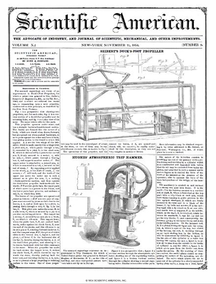 November 11, 1854