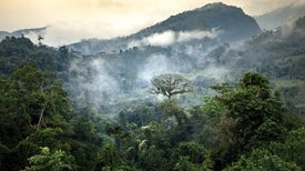 Conservation after Conflict in Colombia