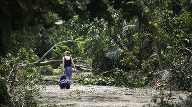 Hurricane Irma: Florida's Overdevelopment Has Created a Ticking Time Bomb