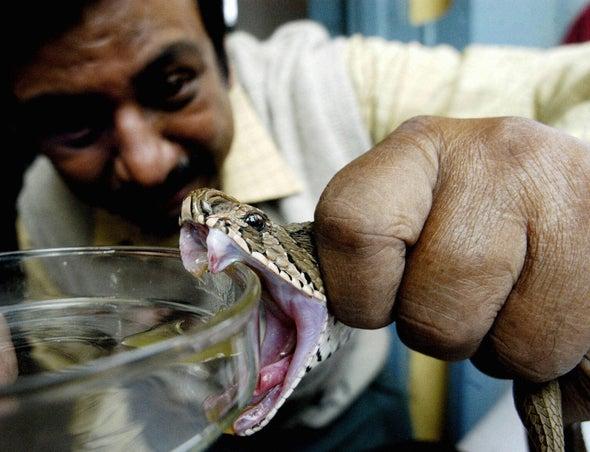 Synthetic Biology Bites Back at Global Snake Antivenom Shortage
