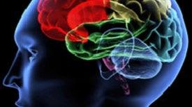 Prescription for a Healthier Brain: Coffee and Cigarettes?