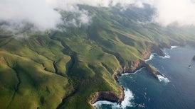 Mexico Designates North America's Largest Ocean Reserve
