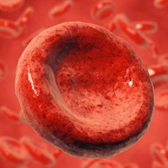 Cell Whisperer: Lasers Unlock Secrets of the Blood