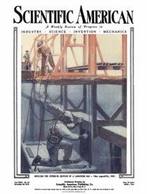 November 29, 1919