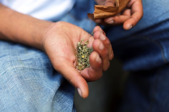 """The Spice of Death: The Science behind Tainted """"Synthetic Marijuana"""""""