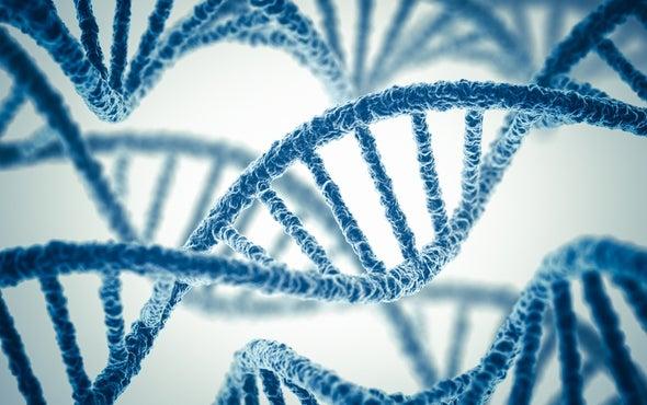 肿瘤突变负担:解锁癌症的遗传指纹