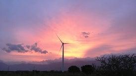 Wind Turbines Can Act Like Apex Predators