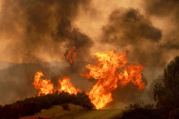 This Scientist Chases Wildfires to Better Predict Fire Behavior
