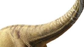 Giant Dinosaur Walks Again in Supercomputer Simulation