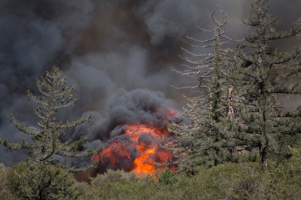 Extremely Dry U.S. West Is Ripe for Wildfires