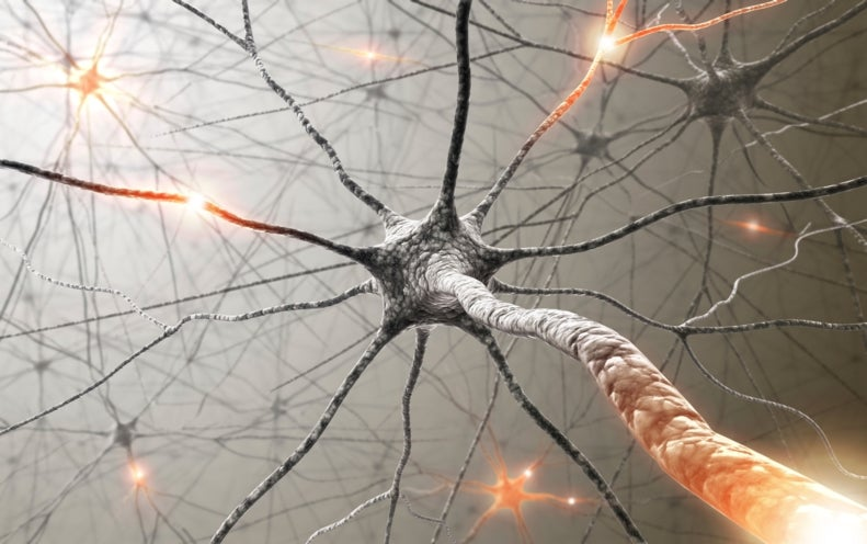 """""""Artificial Synapses"""" Could Let Supercomputers Mimic the Human Brain"""