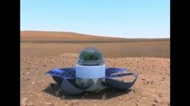 How to Grow Spinach on Mars