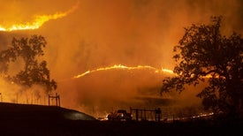 Electric Utilities Can't Blame Wildfires Solely on Climate, Experts Say