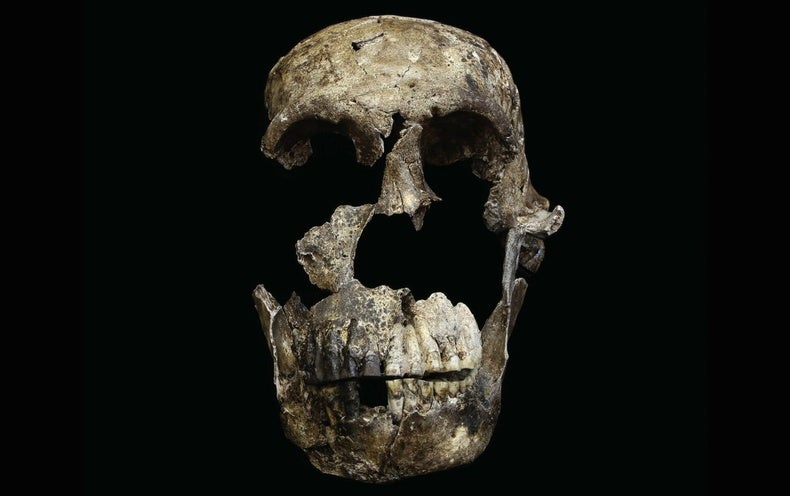 New Evidence of Mysterious <i>Homo naledi</i> Raises Questions about How Humans Evolved