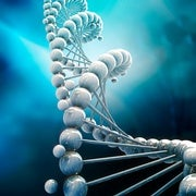 Lights, Cameras, CRISPR: Biologists Use Gene Editing to Store Movies in DNA