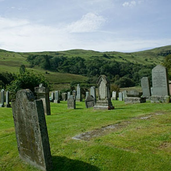 Eco-Afterlife: Green Burial Options
