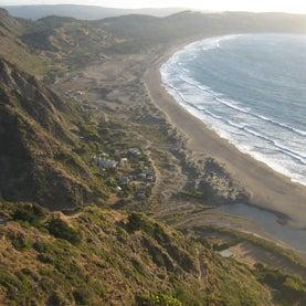 Chilean Earthquake Restores Beaches