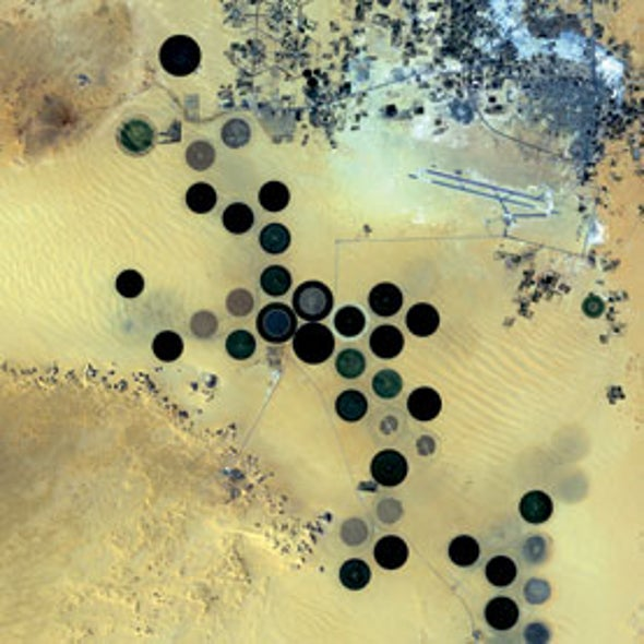 Ancient Water Irrigates Saharan Oasis