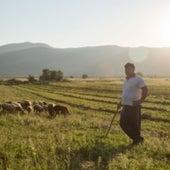 A shepherd from Kuta