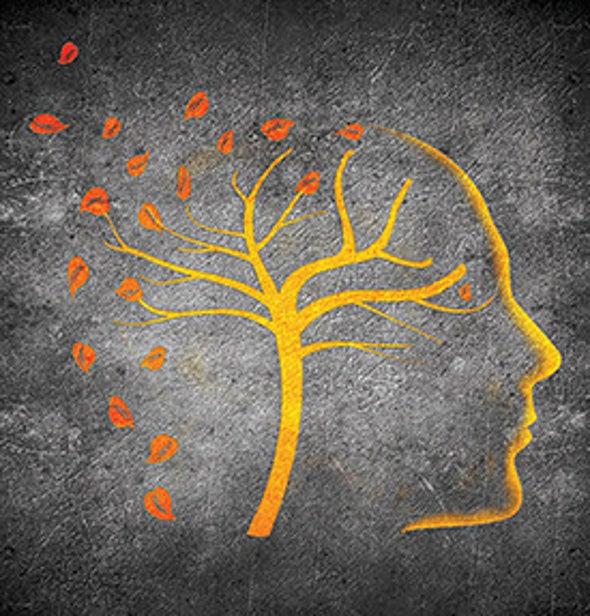 How the Brain Purges Bad Memories