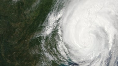 Can Science Halt Hurricanes?