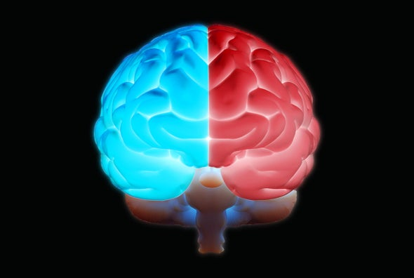 Conservative and Liberal Brains Might Have Some Real Differences