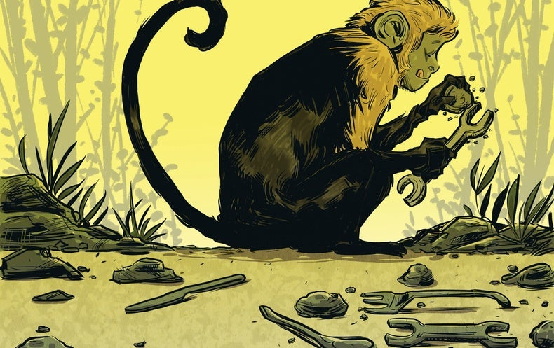 "Monkeys Make Stone ""Tools"" That Bear a Striking Resemblance to Early Human Artifacts"