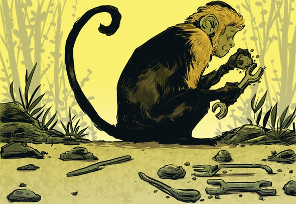 """Monkeys Make Stone """"Tools"""" That Bear a Striking Resemblance to Early Human Artifacts"""
