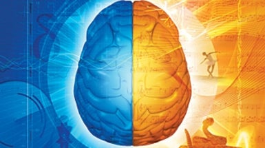 Evolutionary Origins of Your Right and Left Brain