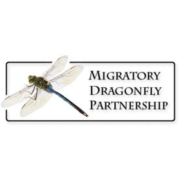 Migratory Dragonfly Partnership