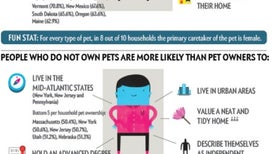What Your Pet Reveals about You
