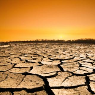 Farmed Out: How Will Climate Change Impact World Food Supplies?