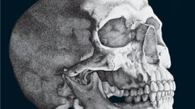 The Human Evolution Issue--2014