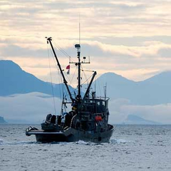 U.S. Bans Commercial Fishing in Warming Arctic