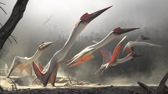 Pterosaurs Were Monsters of the Mesozoic Skies