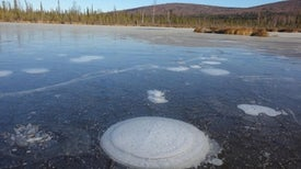 Arctic Lakes Might Emit Less Carbon Than Suspected