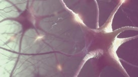 Brain Implants for Mood Disorders Tested in People