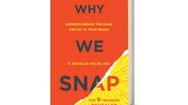 <i>Scientific American MIND</i> Reviews <i>Why We Snap</i>