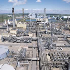 Fatal Risk from Stored CO2 Leakage Appears Remote