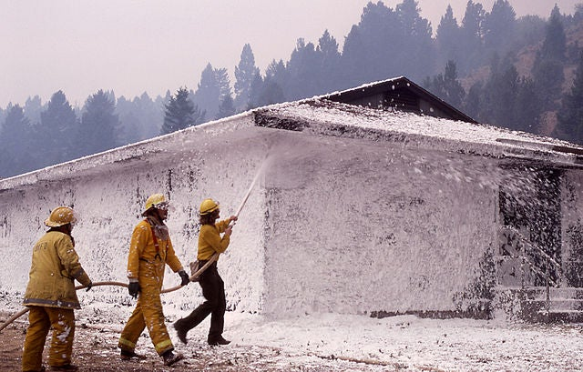 Firefighters' Blood Holds Chemicals Related to Potentially Toxic Compound