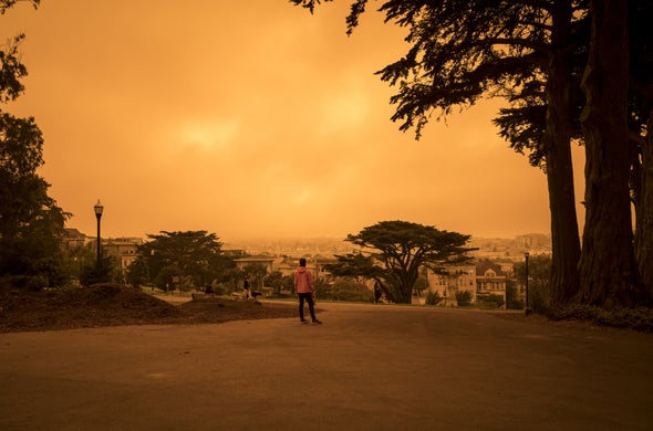 What's in Wildfire Smoke, and Why Is It So Bad for Your Lungs?