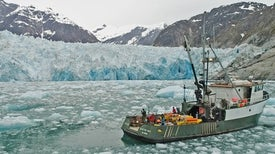 Alarming Sonar Results Show Glaciers May Be Melting Faster Than We Expected