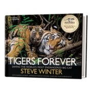 Book Review: <em>Tigers Forever</em>