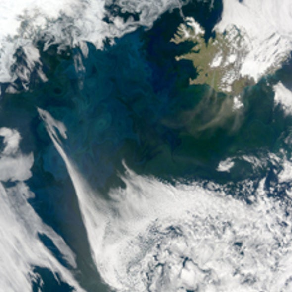 What Causes the North Atlantic Plankton Bloom?