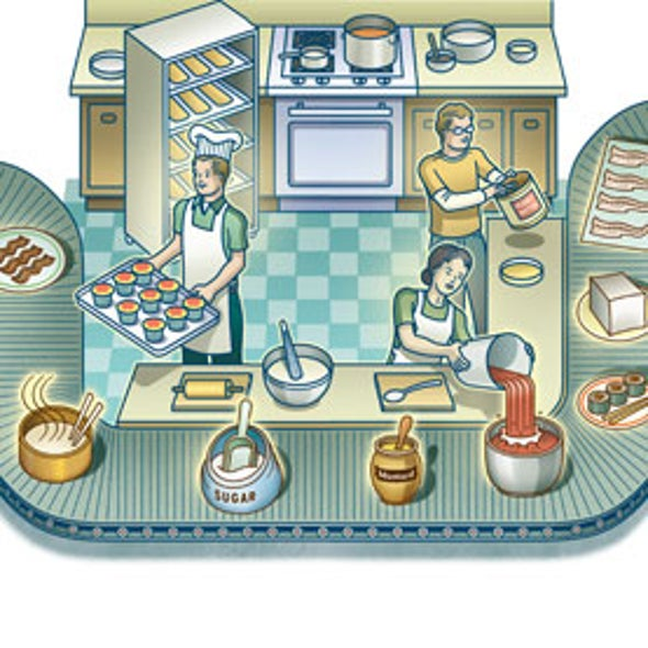 Processed Food: A 2-Million-Year History
