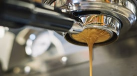 Espresso Machines Brew a Microbiome of Their Own